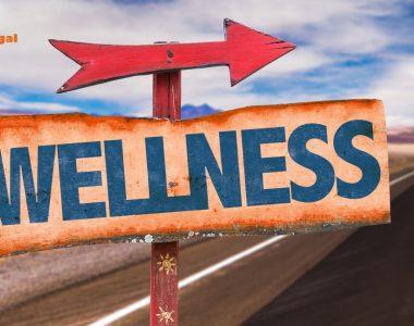 Financial Wellness Guide