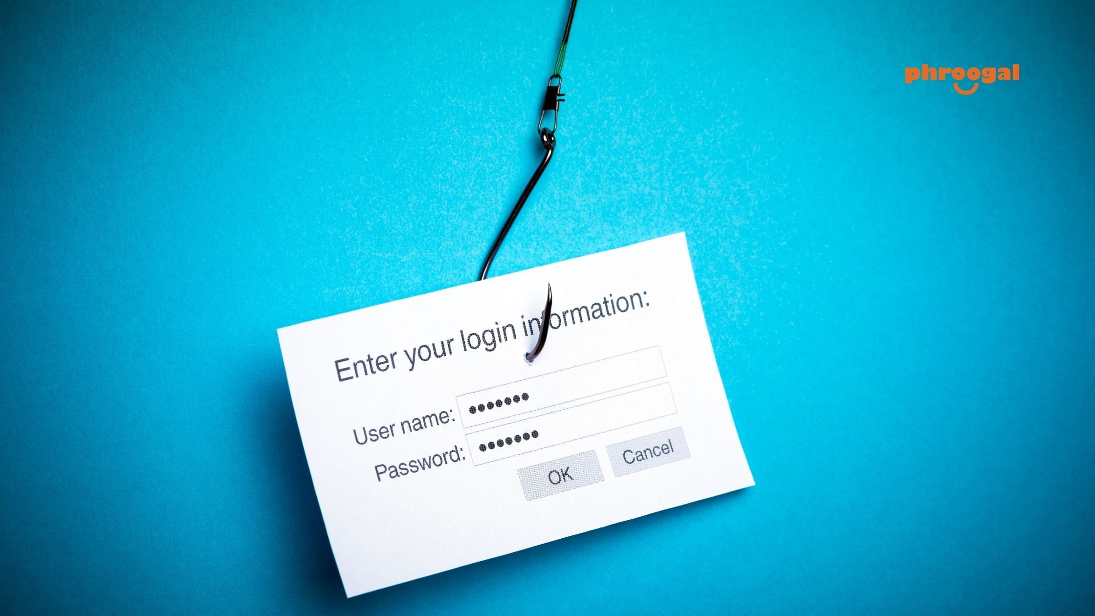 Protect Yourself From Phishing Scams phroogal