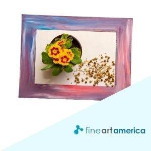Fine Art America review